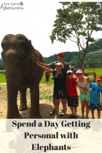 Getting personal with elephants
