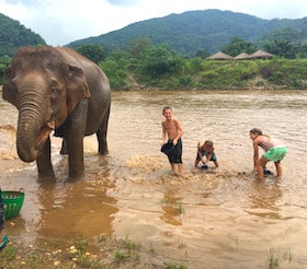 Getting personal with Elephants, Thailand