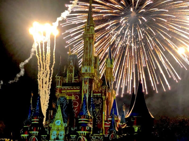 Magic Kingdom Fireworks, Disney VIP