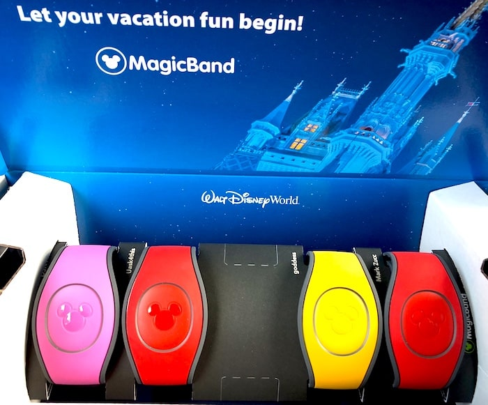 Magic Bands, Disney VIP