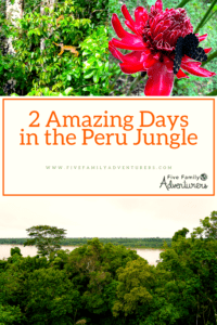 Peru Jungle, 2 days