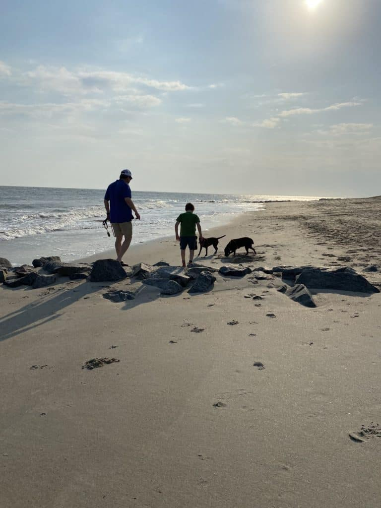 dogs and man and child running on the beach